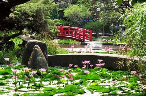 imagenes de jardines estilo japones de paseo con ginger hoy jardin japon 233 s escobar im 225 genes