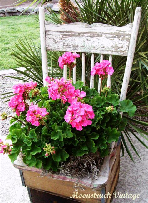 Planting The Chic In Cheap by Borax Sugar