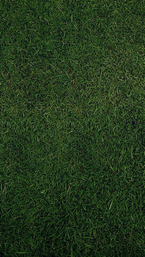 iphone wallpaper green grass 640x1136 green grass background iphone 5 wallpaper