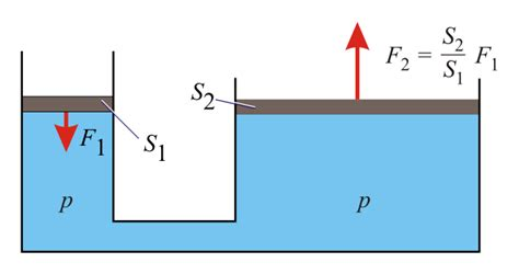 teoria vasi comunicanti legge di pascal la pressione idrostatica e il torchio