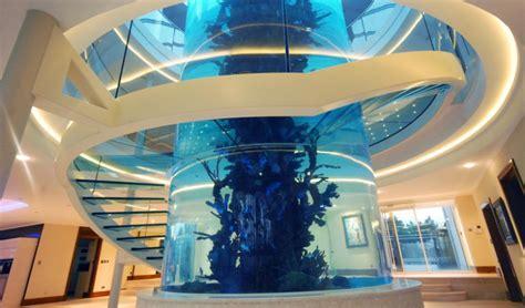 aquarium design glasgow astonishing gleneagles fish tank gleneagles queen s