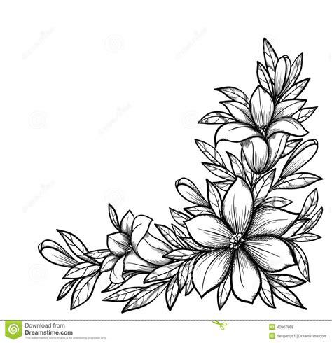 imagenes de flores a blanco y negro rama blanco y negro hermosa con las flores stock de