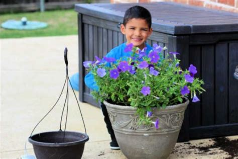 save  flowers budget friendly flower pot ideas