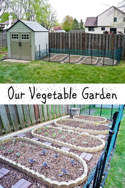 how to set up vegetable garden our vegetable garden and shed that took all of two weeks