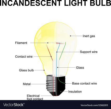 parts of led light bulb incandescent light bulb parts pixshark com images