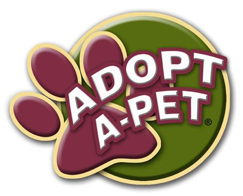 adopt a homeless pets finding families at petland stores nationwide