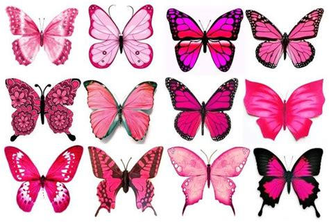 edible tattoo paper paper pink butterfly and pink on pinterest