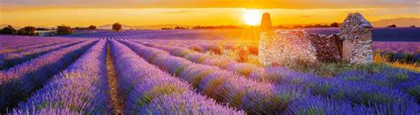 buy a house in provence buy a house in provence luxury real estate in france