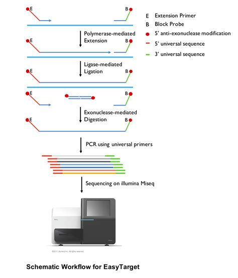 exome sequencing illumina genesky bio tech targeted sequencing cnv detection
