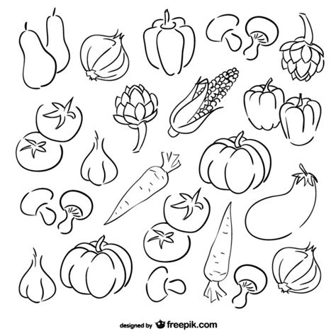 imagenes de verduras a blanco y negro conjunto de dibujos de verduras descargar vectores gratis
