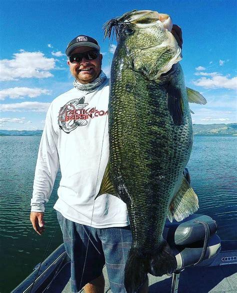 Army Premium Magic Bass 43 best bass fishing pictures bass army images on fishing pictures armies and army