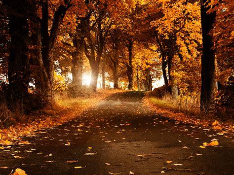 Foto te bukura nga Natyra