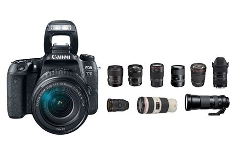 which canon is the best best lenses for canon 77d daily news