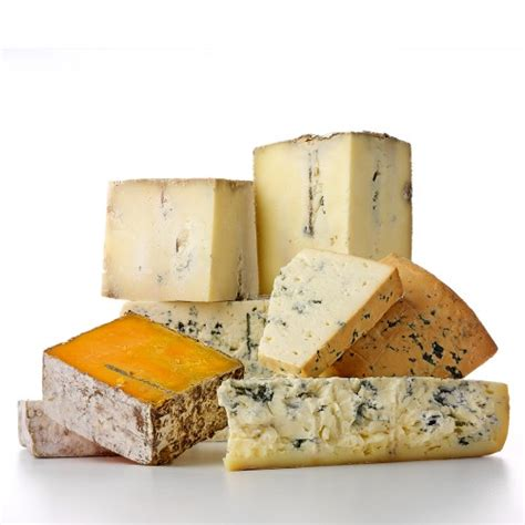 the cheese is old and moldy where is the bathroom enjoy cheese on national moldy cheese day wisconsin