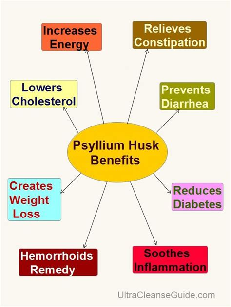 Is Diarrhea A Side Effect Of Detox Cleansing by Benefits Of Psyllium What Are The Psyllium Husk Benefits