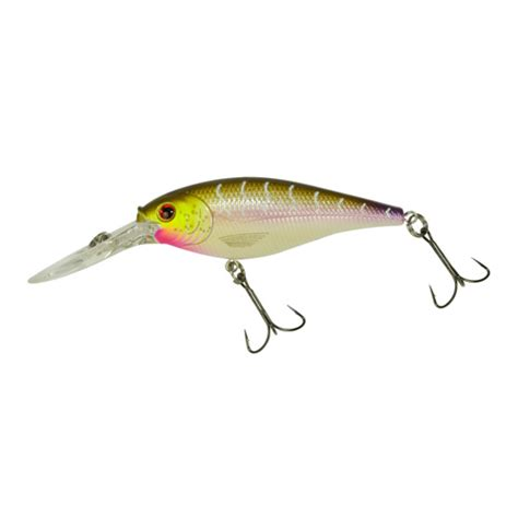 flicker shad colors top flicker shad colors ohio fishing your ohio