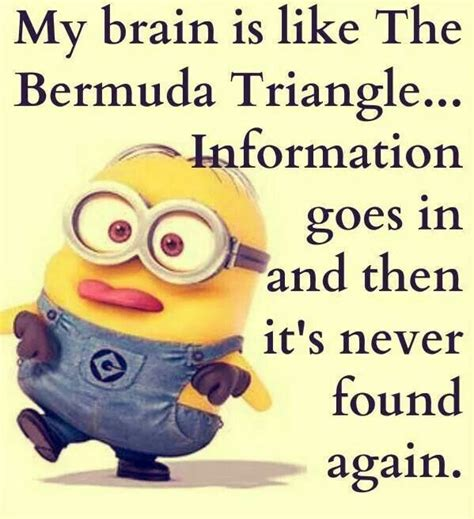 Minions Quotes best 40 minions humor quotes quotes and humor