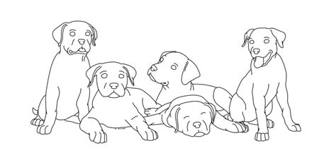 litter of puppies coloring pages rottweiler litter by smigolson on deviantart
