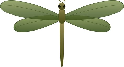 dragonfly clipart dragonfly flying clipart