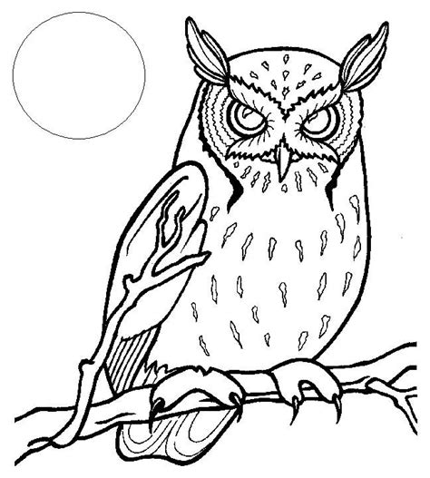 owl moon coloring page owl and moon tattoo coloring pages