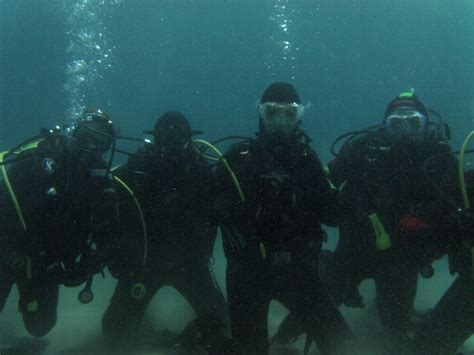 dive bari polo sub diving bari www polosubdiving it pagina 3
