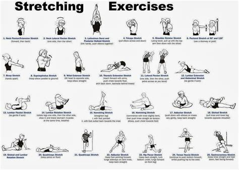 Chair Disc Stretching Exercises Flexibility Killeen Chiropractor