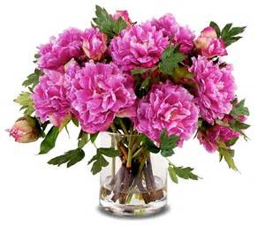 peony bouquet in cylinder vase fuchsia contemporary