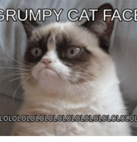 Grumpy Meme Face - grumpy cat face lolololololololololololo olol cat face