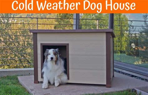 best dog houses for cold weather best house for cold weather 28 images all on the