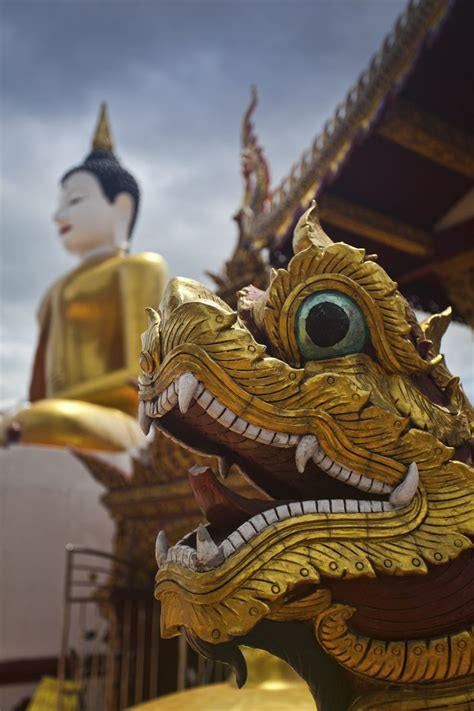 naga tattoo chiang mai facebook 44 best images about thailand treasures on pinterest
