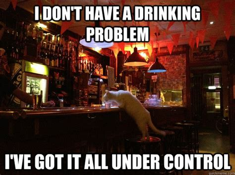 Drinking Problem Meme - i don t have a drinking problem i ve got it all under