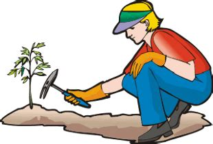 clip gardener gardening clipart graphics of gardeners and tools