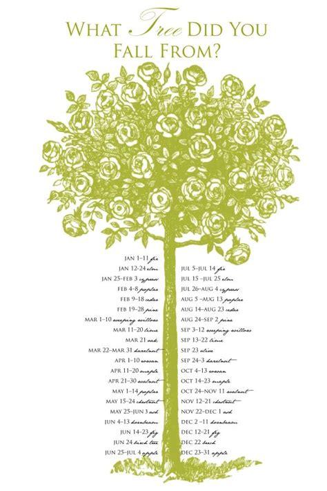 Celtic Tree Calendar Best 25 Celtic Astrology Ideas On Name