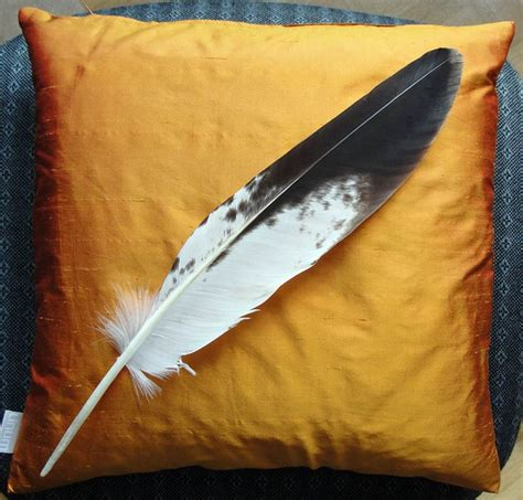 golden eagle tattoo essen young golden eagle feather feathers pinterest eagle