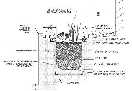 rain garden section section at rain garden water garden pinterest
