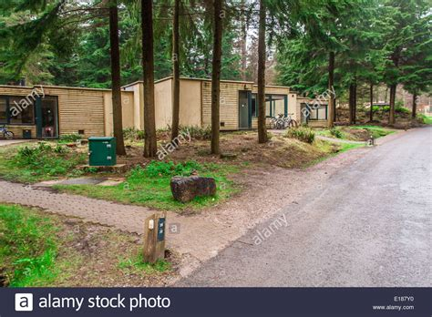 Center Parcs Log Cabins by Woodland Lodges At Center Parcs Longleat Forest Wiltshire