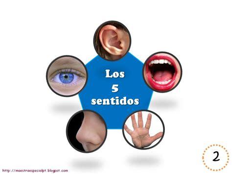 los 5 sentidos de los 5 sentidos