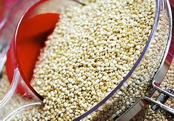 whole grains bad for you whole grains are they bad for you or healthy builtlean
