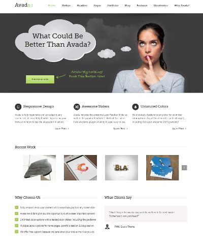 themes similar to avada the best wordpress themes 2012