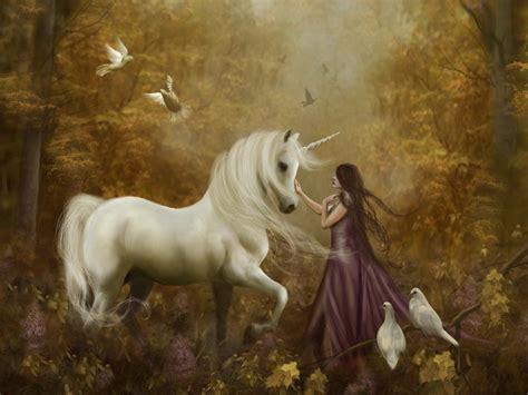 imagenes de unicornios magicos fondos de pantalla 1024x768 m 225 gicos animales unicornios