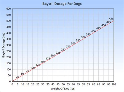 baytril dosage for dogs baytril for dogs veterinary place