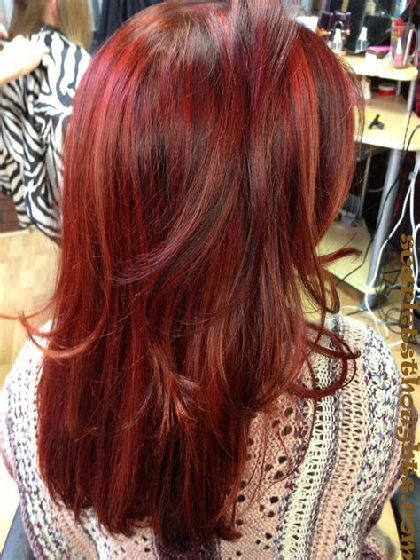red hair with lowlights 41 best dye job ideas images on pinterest hair colors