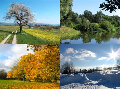 Four Seasons by File Four Seasons Jpg