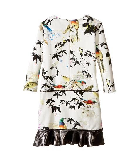 Atasan Big Ruffle White roberto cavalli bird print dress w contrast ruffle hem big at zappos