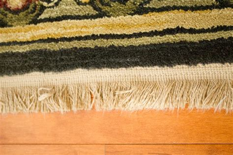 Shaw Living Medallion Area Rug Shaw Living Quot Antiquities Collection Quot Machine Woven Area Rug Ebth
