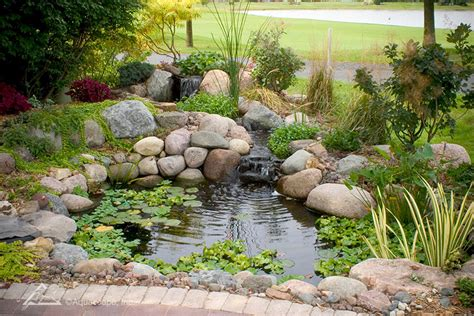 aquascape pond water garden ecosystem ponds backyard pond designs