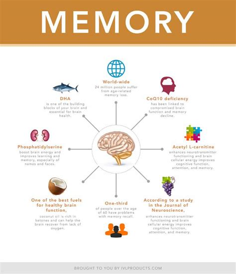 memory the powerful guide to improve memory memory tips memory techniques unlimited memory memory improvement for success books how to improve your memory top 8 tips to boost brainpower