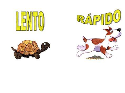 imagenes de animales lentos comparativos