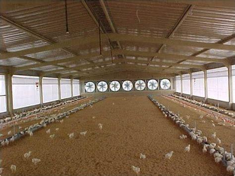 Termometer Kandang dunia ayam house system sistim kandang tertutup
