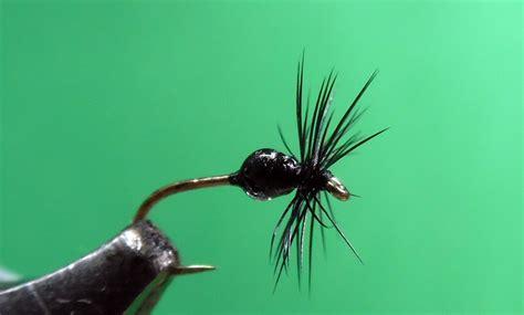 black gnat pattern black fly black gnat or smut missouri trout fisherman